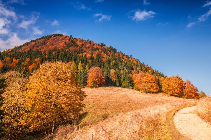 Paysage d'automne en parc national de Mala Fatra, Slovaquie photo stock