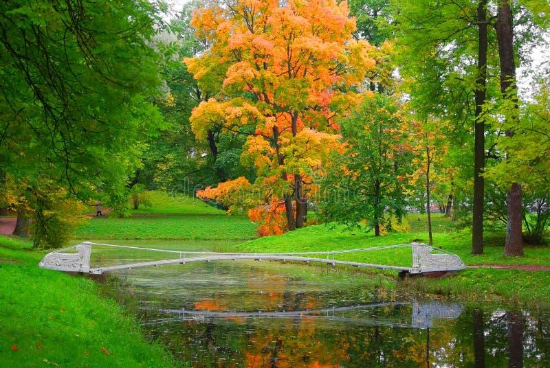 Paysage d'automne et pont chancelant en Alexander Park images libres de droits