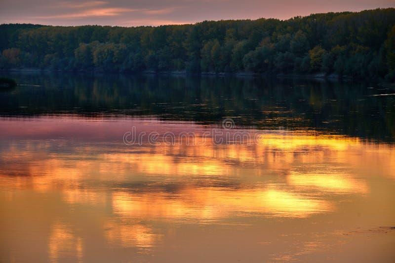 Paysage d'automne - forêt et beaux arbres près de la rivière, lumière du soleil lumineuse au coucher du soleil, automne photo libre de droits