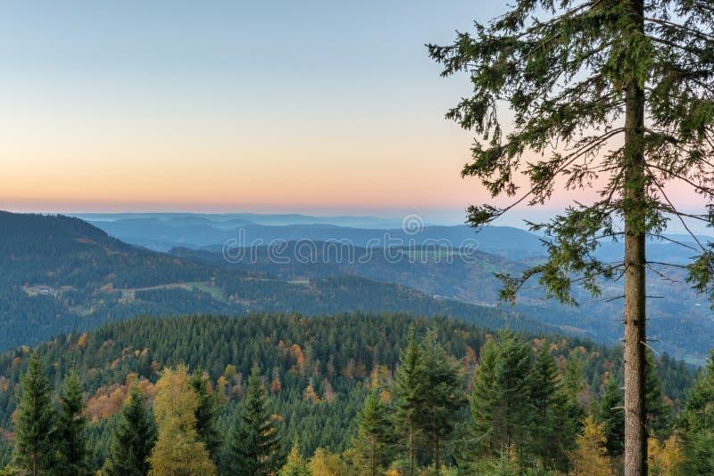 Paysage d'automne - forêt noire image stock