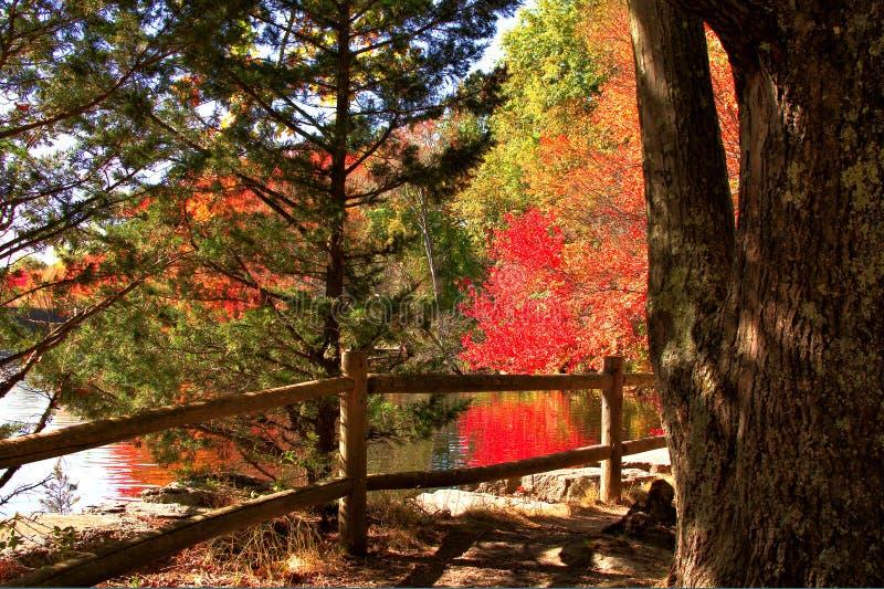 Paysage d'automne le long d'un réservoir photos libres de droits