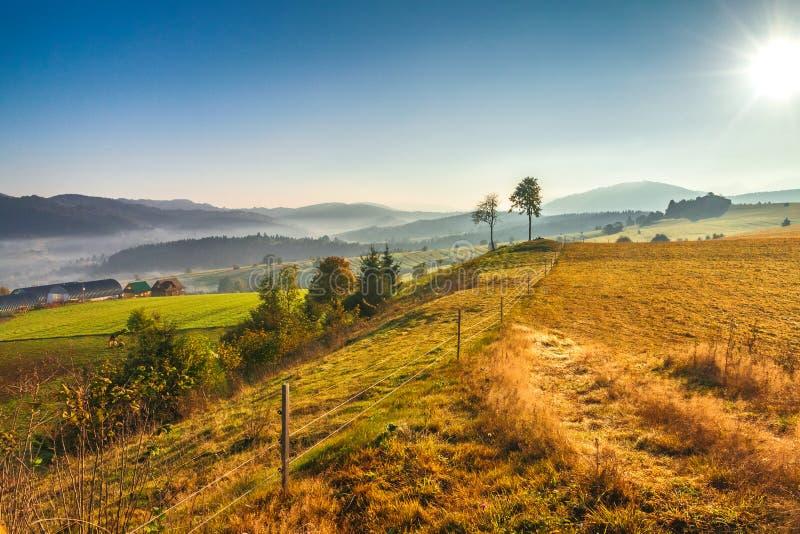Paysage d'automne, lever de soleil dans un matin brumeux image stock