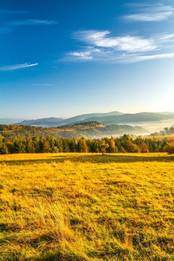 Paysage d'automne, lever de soleil dans un matin brumeux photographie stock libre de droits