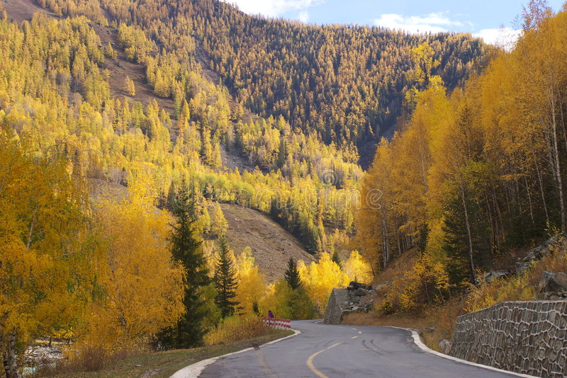 Paysage d'automne sur le bord de la route image libre de droits