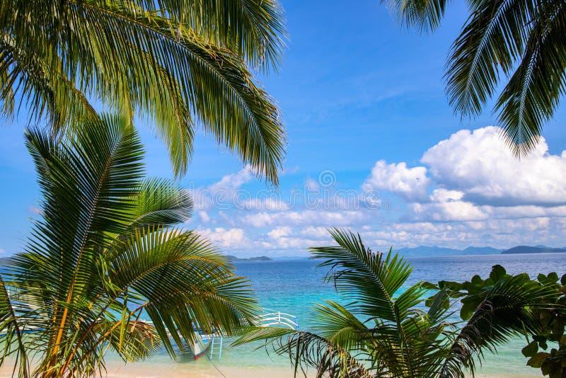 Paysage d'eau de mer de bleu de palmette et de turquoise de Cocos Verdure tropicale et vue blanche de plage de sable Vacances exo photos libres de droits