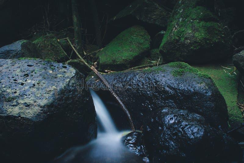 Paysage d'eau de source de forêt tropicale Longue exposition images libres de droits