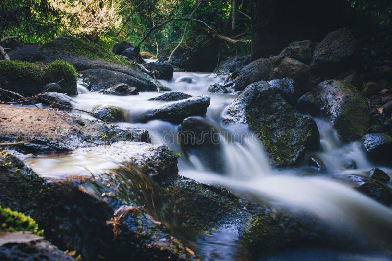 Paysage d'eau de source de forêt tropicale Longue exposition photos stock