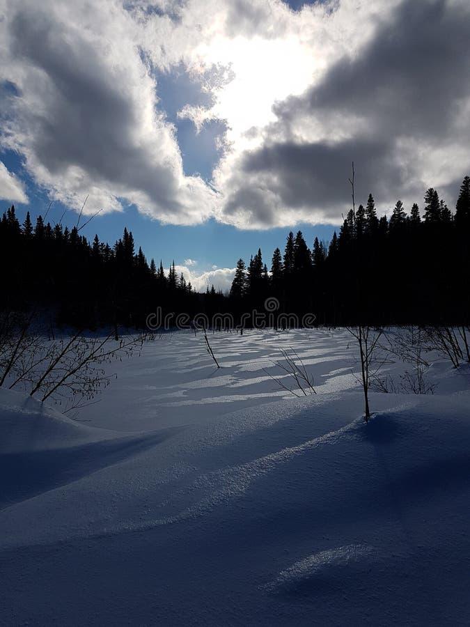 Paysage d& x27; hiver 免版税库存图片