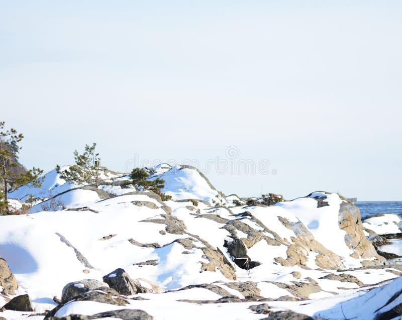 Paysage d'hiver photos libres de droits