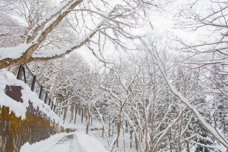 Download Paysage D'hiver, Arbres Avec La Neige Image stock - Image du neige, scène: 87701383