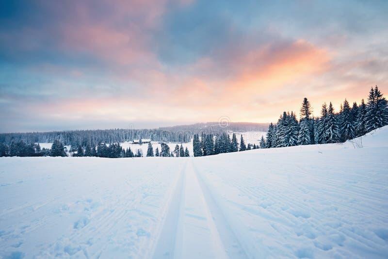 Paysage d'hiver au coucher du soleil photo libre de droits