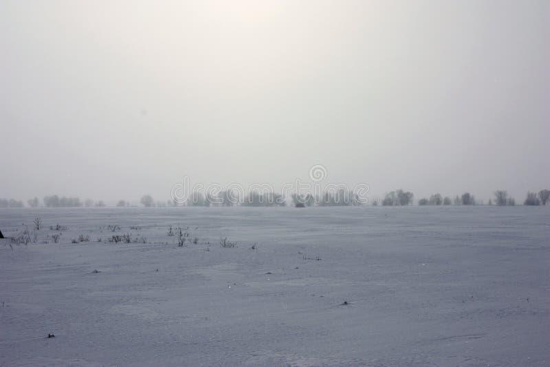 Paysage d'hiver, aube un jour froid images libres de droits