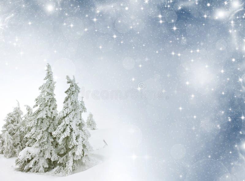 Paysage d 39 hiver avec l 39 espace vide pour le texte photo for Paysage espace