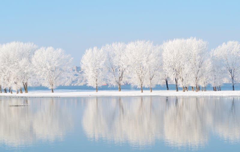 Paysage d'hiver avec la réflexion dans l'eau images libres de droits