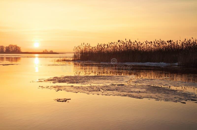 Paysage d'hiver avec la rivière, les roseaux et le ciel de coucher du soleil. photos libres de droits