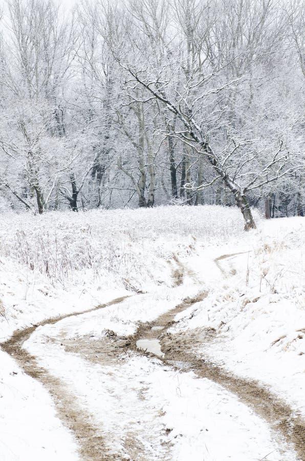 Paysage d'hiver avec la route de campagne photo libre de droits
