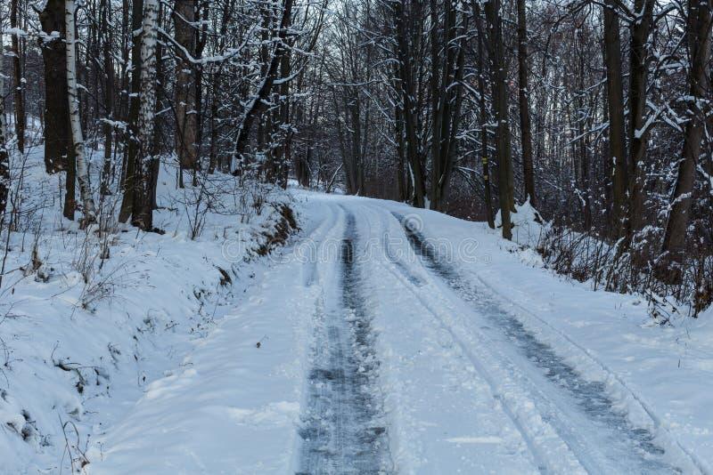 Paysage d'hiver avec les arbres et le chemin neigeux de motoneige photo libre de droits