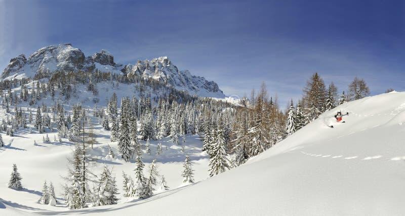 Paysage d'hiver avec un skieur image stock