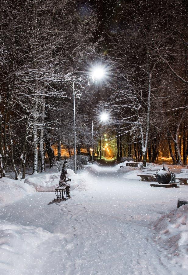 Paysage d'hiver de nuit dans l'allée du parc de ville photographie stock