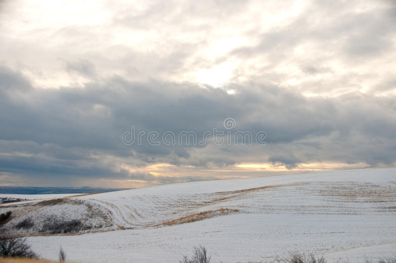 Paysage d'hiver de Palouse photo libre de droits