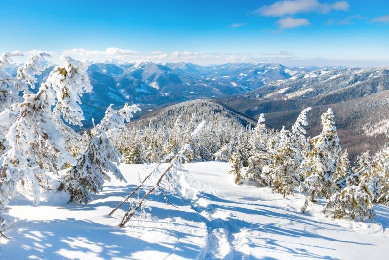 Paysage d'hiver en montagnes image libre de droits