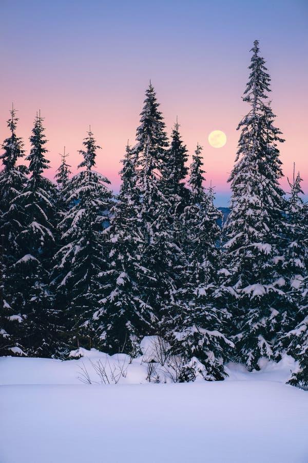 Paysage d'hiver en montagnes avec la pleine lune et le ciel rose photographie stock