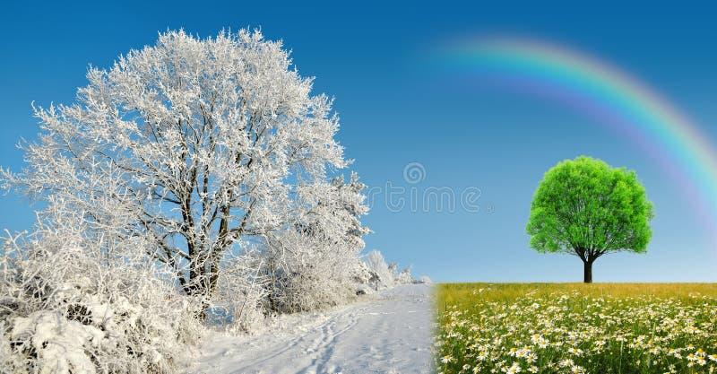 Paysage d'hiver et de printemps avec le ciel bleu Concept de saison de changement images stock