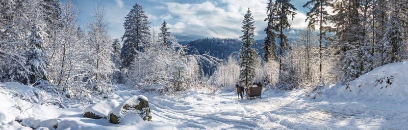 Paysage d'hiver, panorama, bannière - vue de la route neigeuse avec des traîneaux, armée par des chevaux images stock