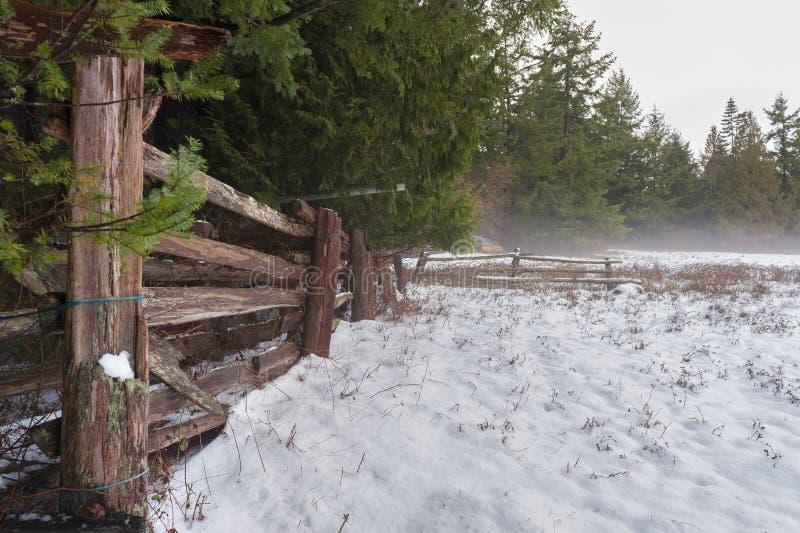 Paysage d'hiver sur l'île de Lummi images stock