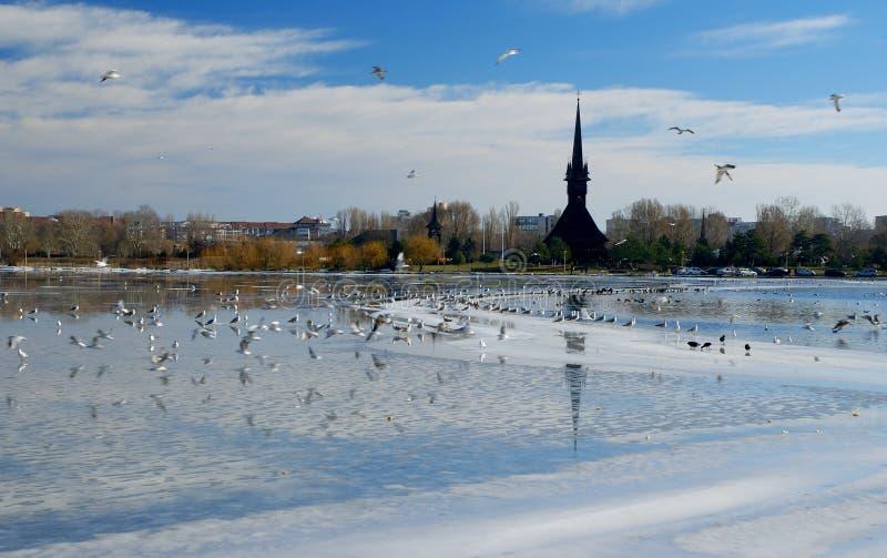 Paysage d'hiver sur le lac Tabacarie dans Constanta, Roumanie photographie stock libre de droits