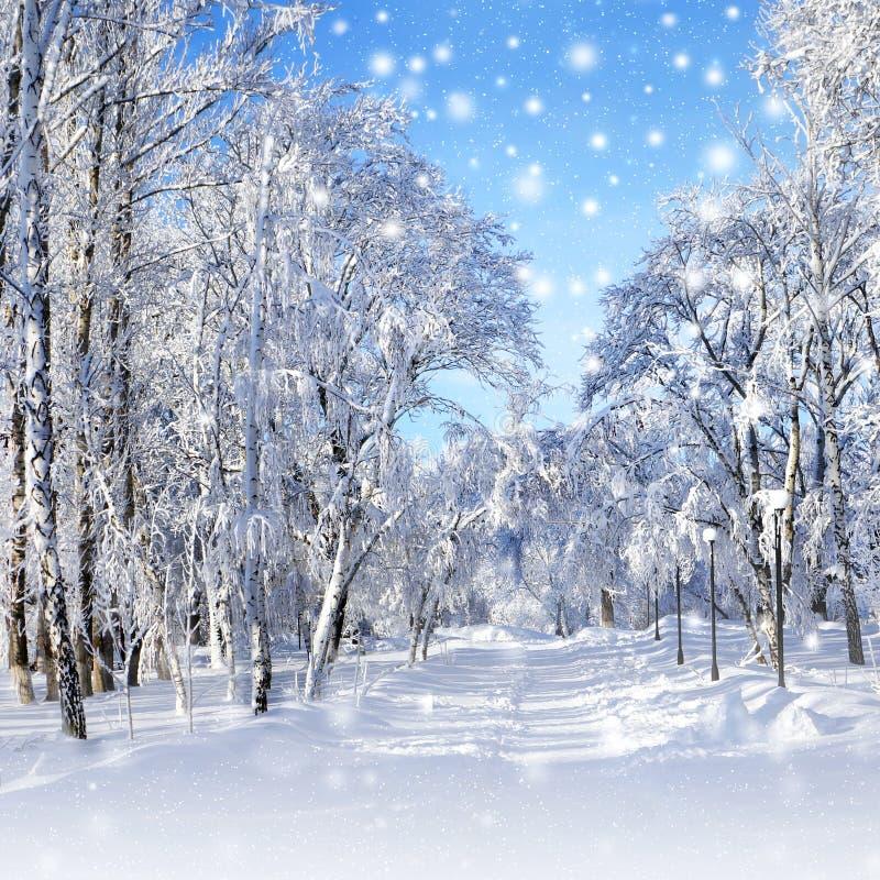 paysage d 39 hiver temp te de neige image stock image du no l route 34291327. Black Bedroom Furniture Sets. Home Design Ideas