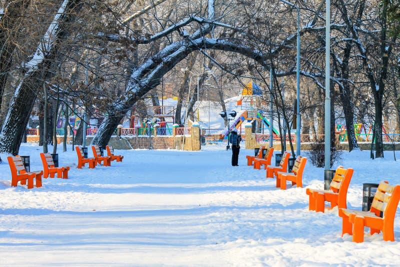 Paysage d'hiver d'un parc couvert de neige blanche pure avec les bancs oranges et les arbres grands photos stock
