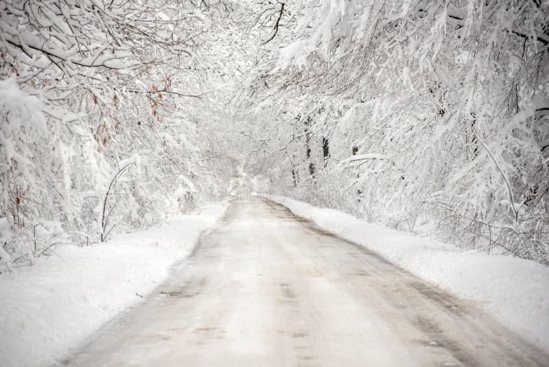 Paysage d'horaire d'hiver dans la forêt avec la neige fraîche, Roumanie, l'Europe images stock