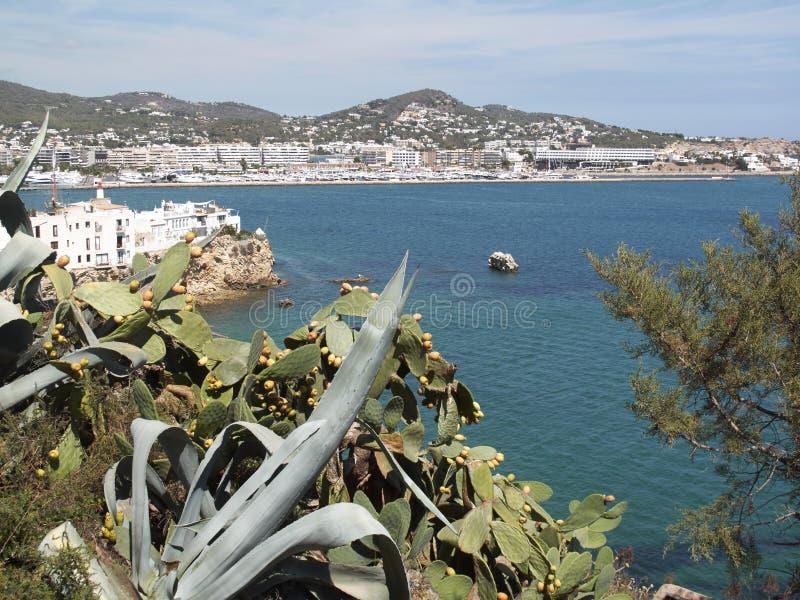 Paysage d'Ibiza de la forteresse image libre de droits