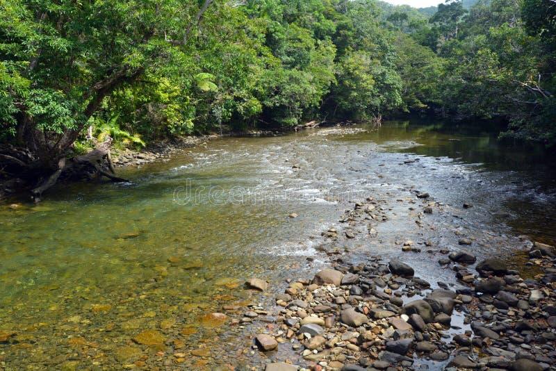 Paysage d'un courant sauvage en parc national Queensland de Daintree photos stock