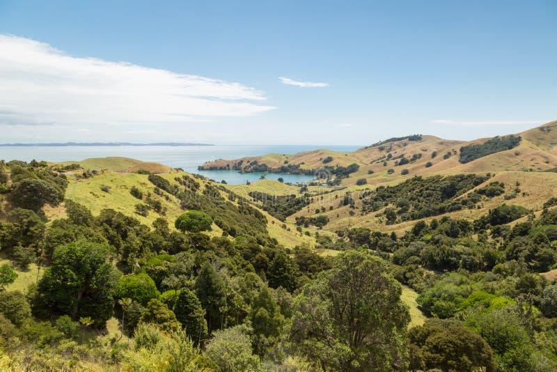 Paysage d'un littoral chez Wilson Bay, Nouvelle-Zélande images stock