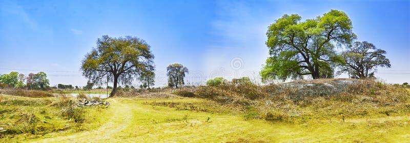 Paysage d'une berge Damodar l'Inde Asansol treeson l'interdiction photographie stock libre de droits