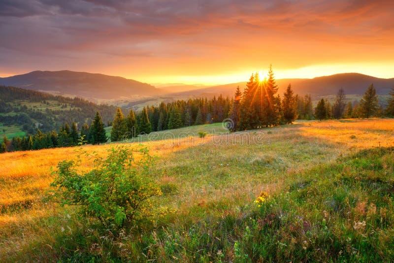 Paysage d'Utumn Nature colorée d'automne Collines et vallées pittoresques pendant le matin photos libres de droits