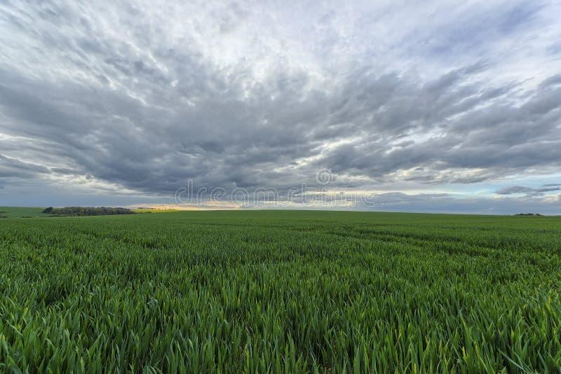 Paysage dans la Bourgogne image libre de droits