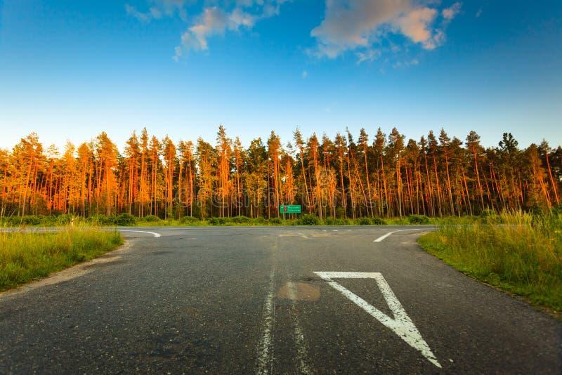 Paysage dans la route goudronnée et la forêt de la Pologne photographie stock