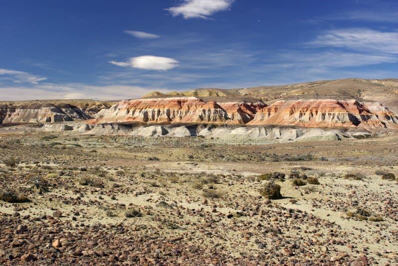 Paysage dans le Patagonia image libre de droits