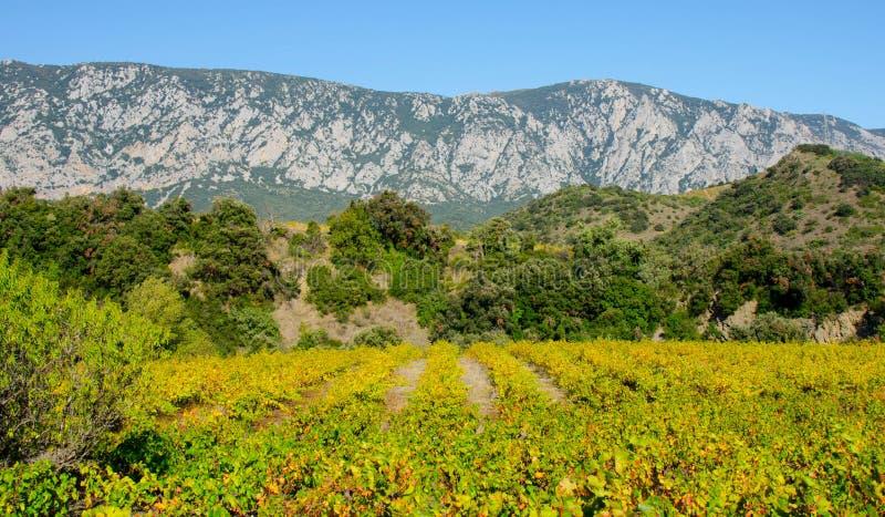 Paysage dans les montagnes de Pyrénées photo libre de droits