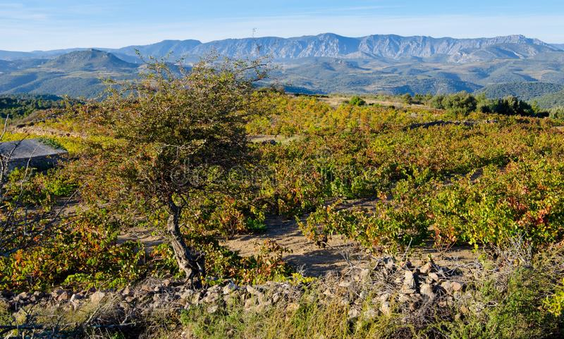 Paysage dans les montagnes de Pyrénées images libres de droits