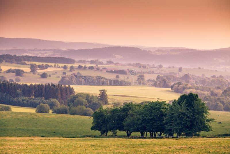 Download Paysage de Bohème image stock. Image du outdoors, forêt - 56488315