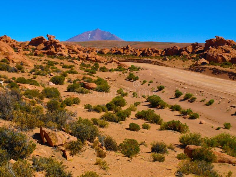 Paysage de Bolivien Altiplano images libres de droits