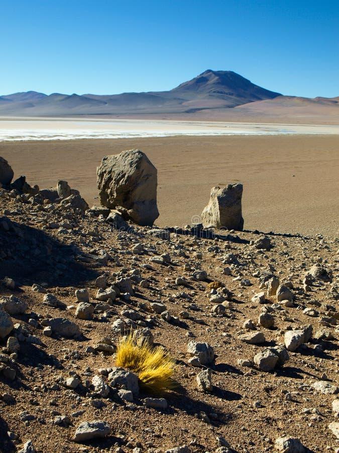 Paysage de Bolivien Altiplano photos stock
