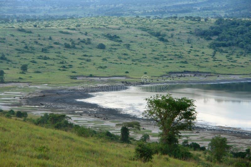 Paysage de bord de l'eau de gorge de Chambura images libres de droits