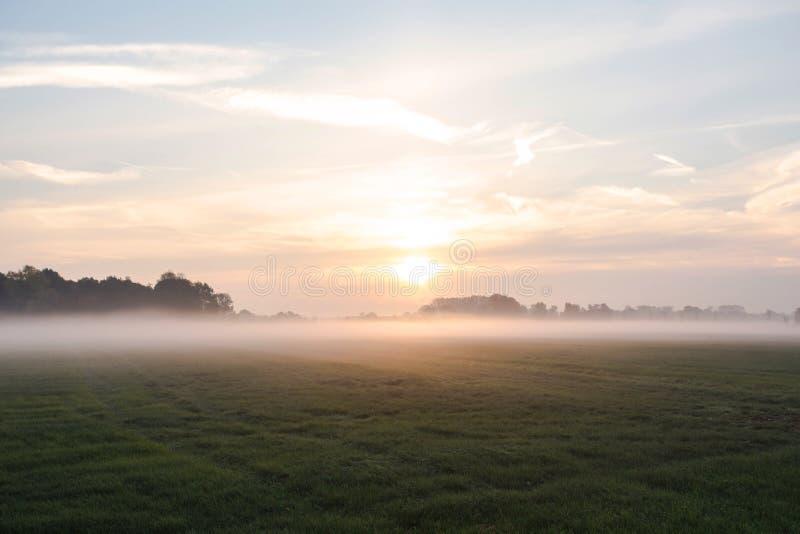 Paysage De Brouillard Brume De Début De La Matinée Dans Le Pré Avec Des  Arbres Photo stock - Image du jour, aube: 129388704