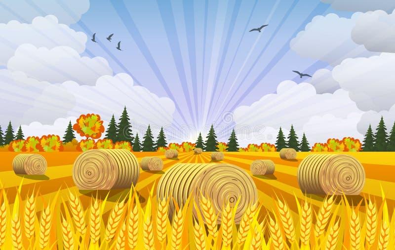 Paysage de campagne avec des meules de foin sur des champs illustration stock