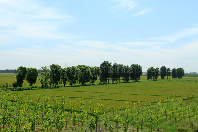 Paysage de campagne en Chine nordique photo stock